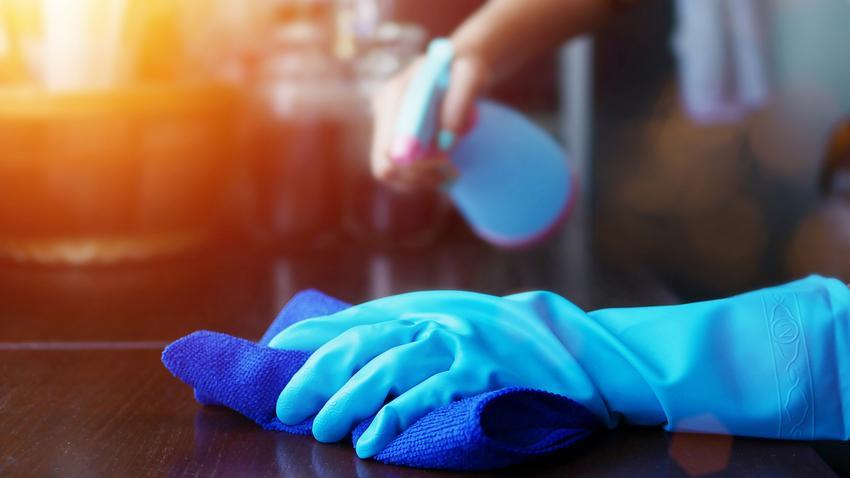 fertőtlenítés és kezelés az ektoparaziták ellen)