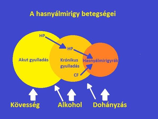 hasnyálmirigyrák sárga)