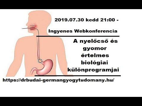 gyomor papillómák)