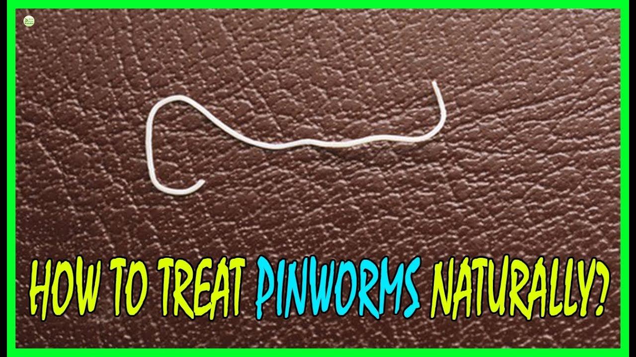 pinworms definíció