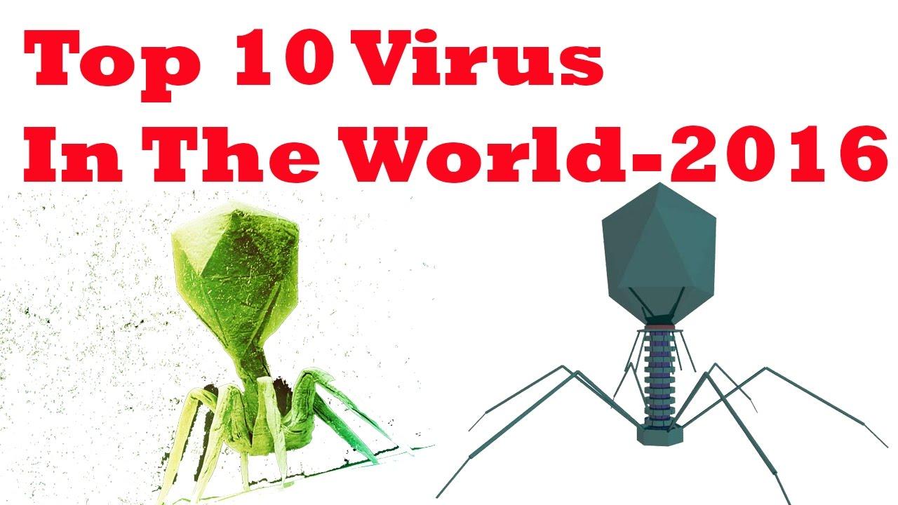 top 10 vírus)
