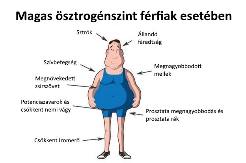 Hormonok: A daganatos betegségek hormonális kezeléséről I.