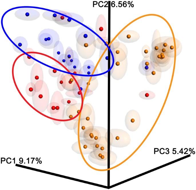 családi rákmeghatározás genetika a féregférgek tünetei és kezelése