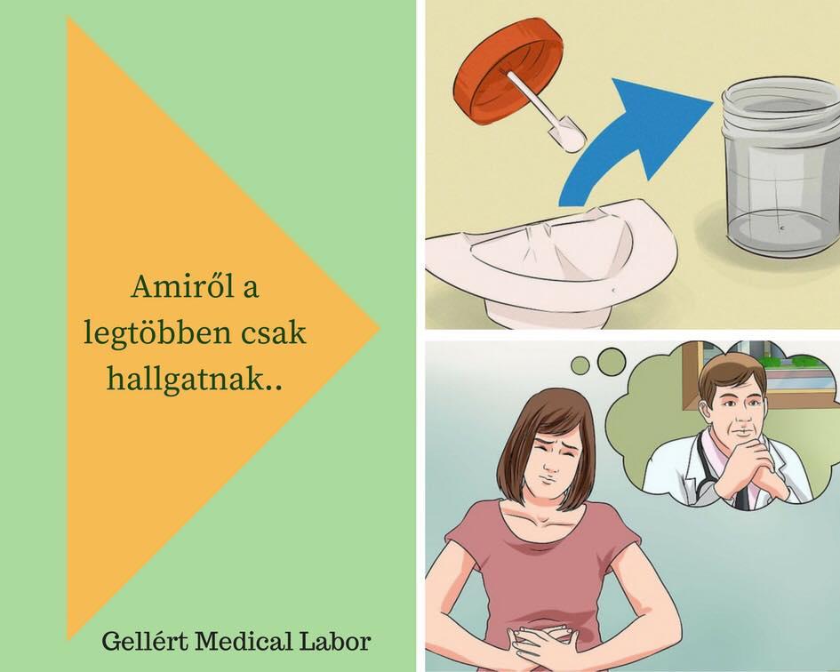 parazita betegségek laboratóriuma)