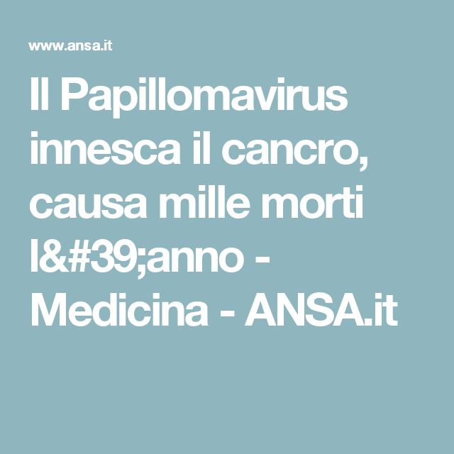 papilloma vírus morte
