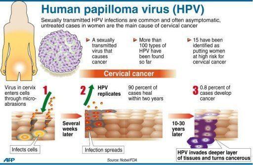 papilloma vírus 44
