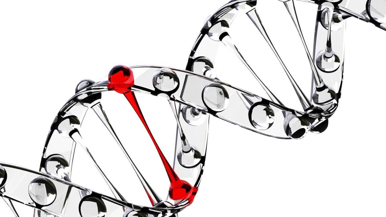 A célzott molekuláris terápiák és immunterápiák szerepe