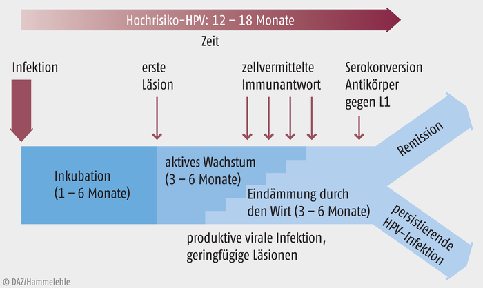 hpv impfung nach 18)