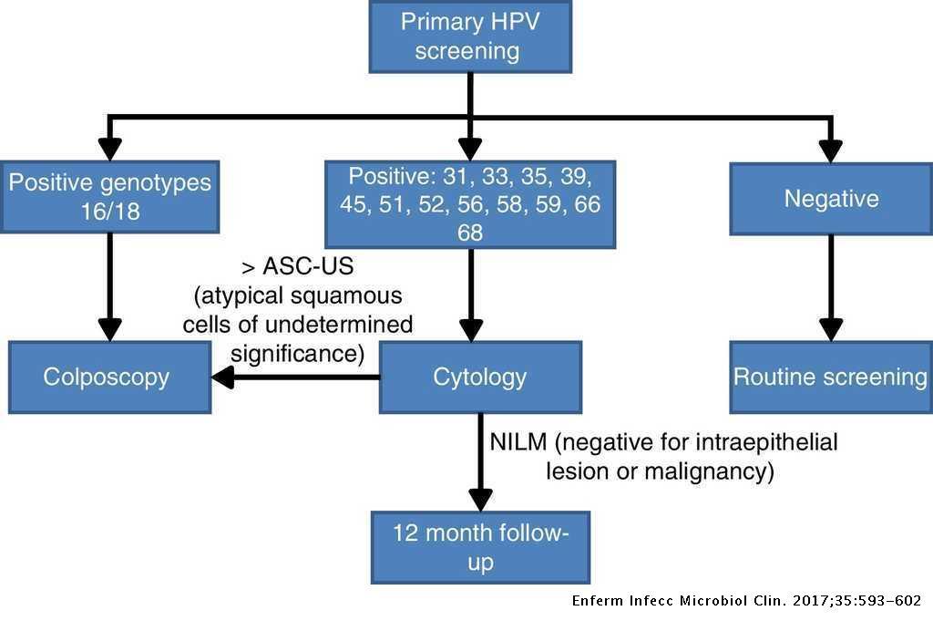 papilloma vírus ascus féreggyógyszer az újszülött számára