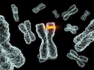 hibás genetikai rák)