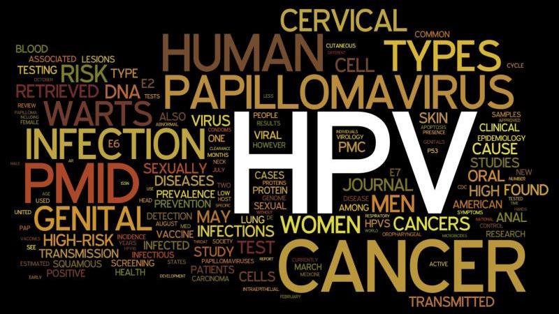 papillomavírus fertőző ágens