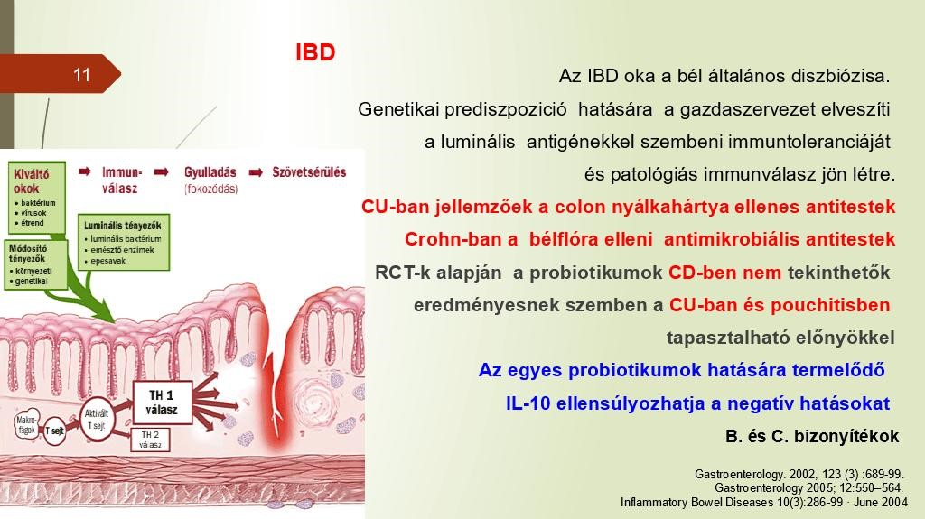 a bél diszbiózisa)