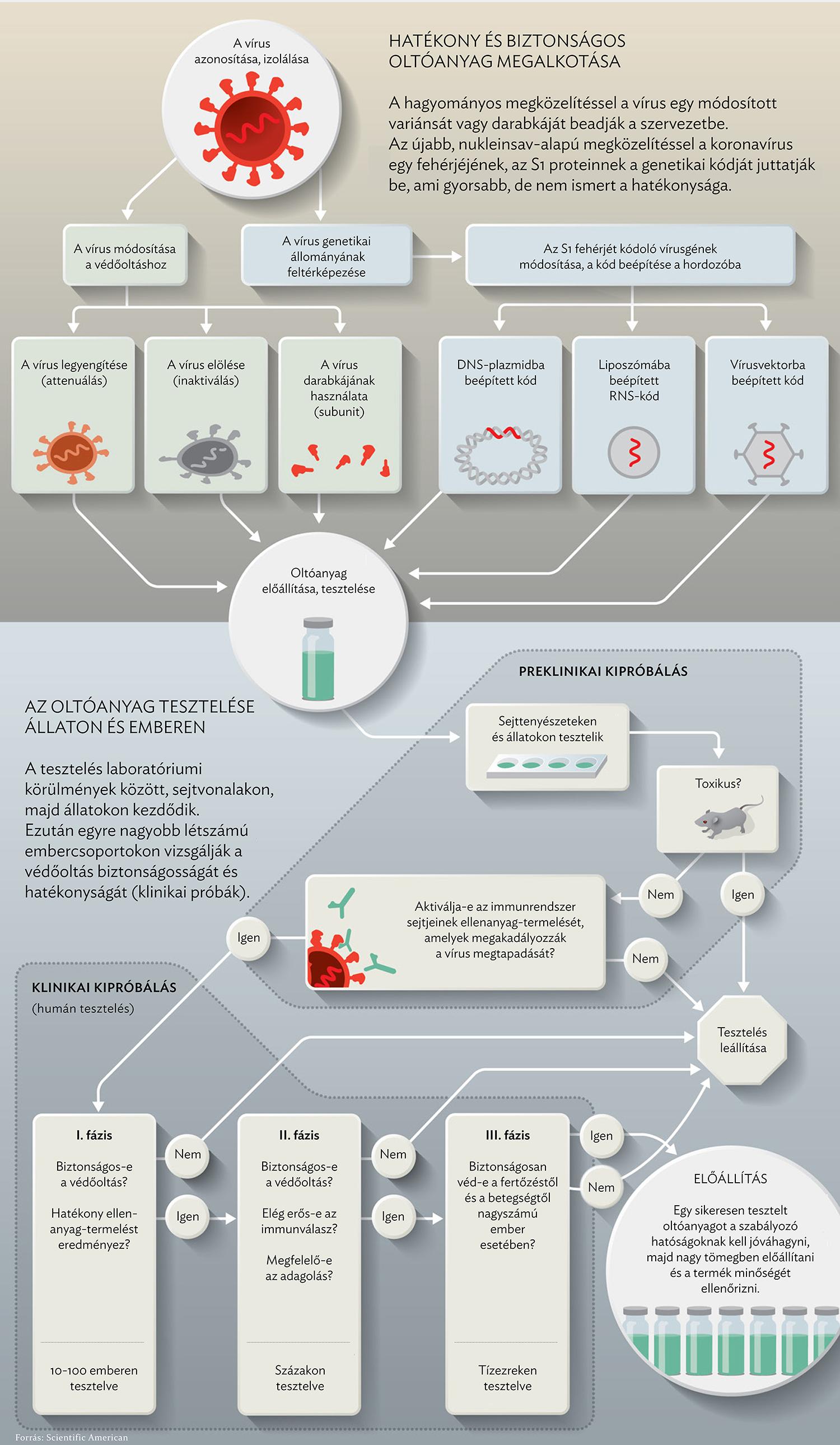 a hpv vakcina mellékhatásai meddig