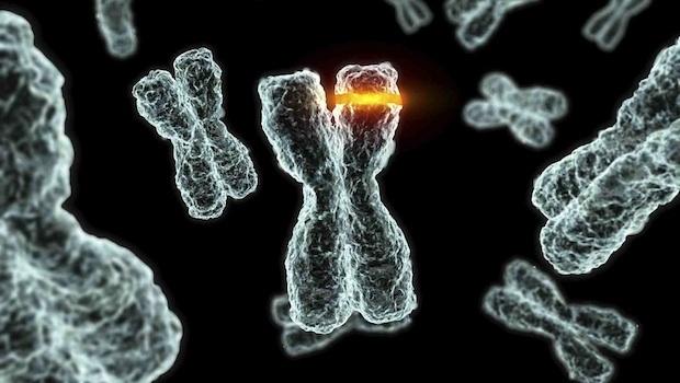 Mikor vezethet egy mutáció betegség kialakulásához?