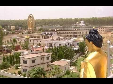 szemölcsök Volgograd