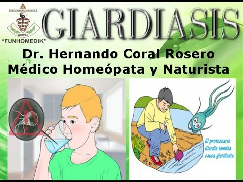 Hogyan lehet megszerezni a giardiasist, Fahéj hasznos tulajdonságok és ellenjavallatok a psoriasis