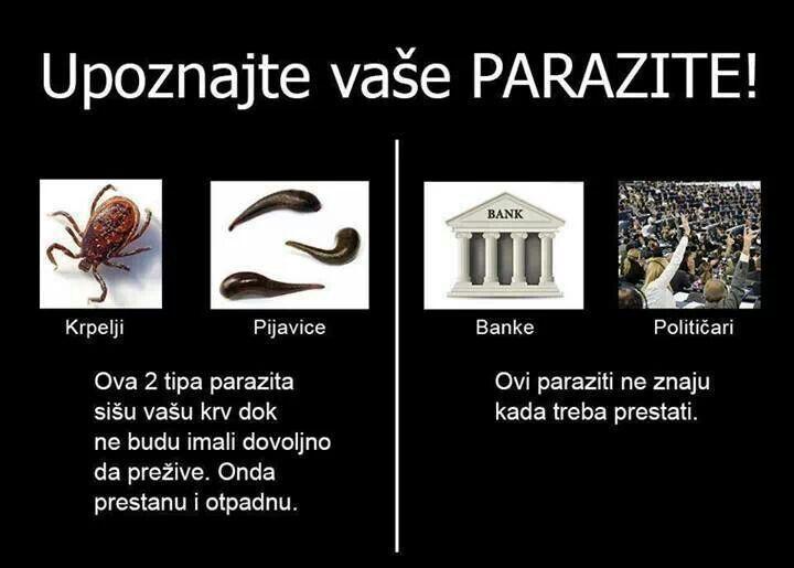 Immortelle a paraziták kezelésében