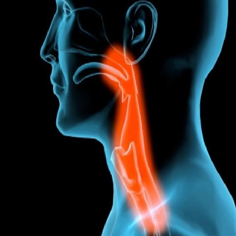 pikkelyes papilloma nyelv kezelése