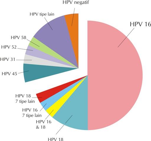 hpv víruskezelő szemölcsök)