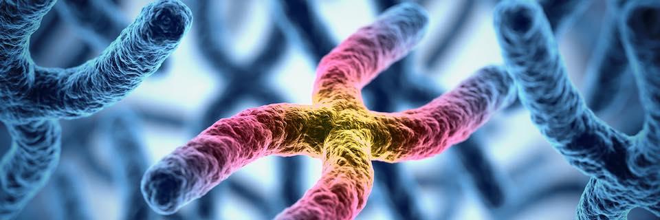 rák genetikai instabilitása