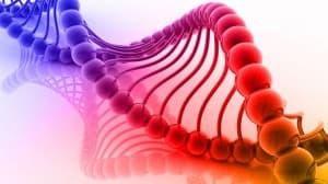 tüdőrák genetikai mutációk)