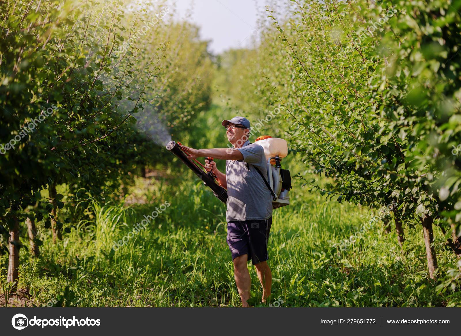 modern peszticidek
