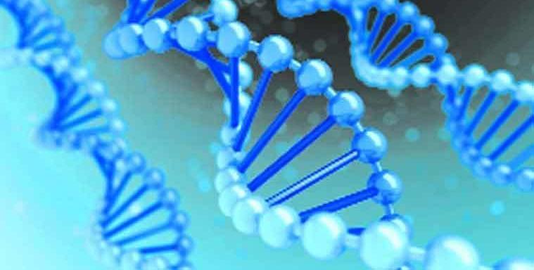a rák genetikai betegség vagy sem
