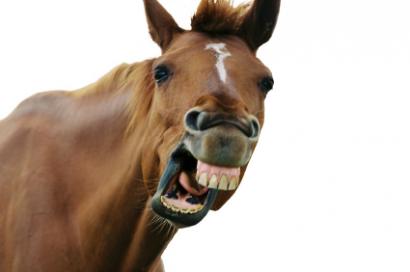a nyelv rojtos hajtásai olyanok, mint a szemölcsök féreg tabletták g-ben
