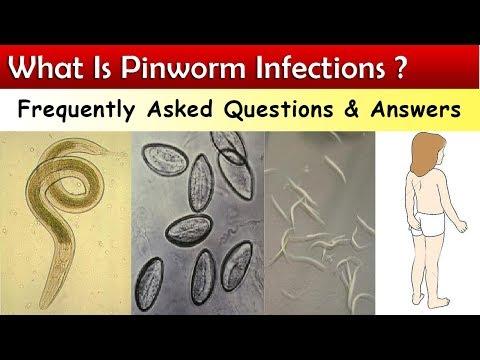 Pinworm tojásférgek