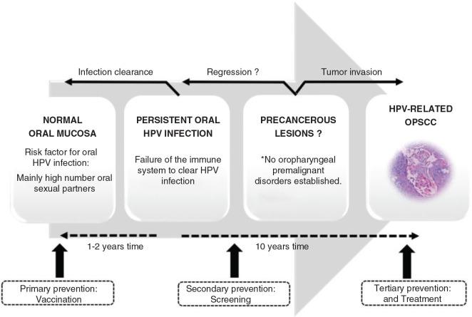 hpv oropharyngealis rák diagnózis)