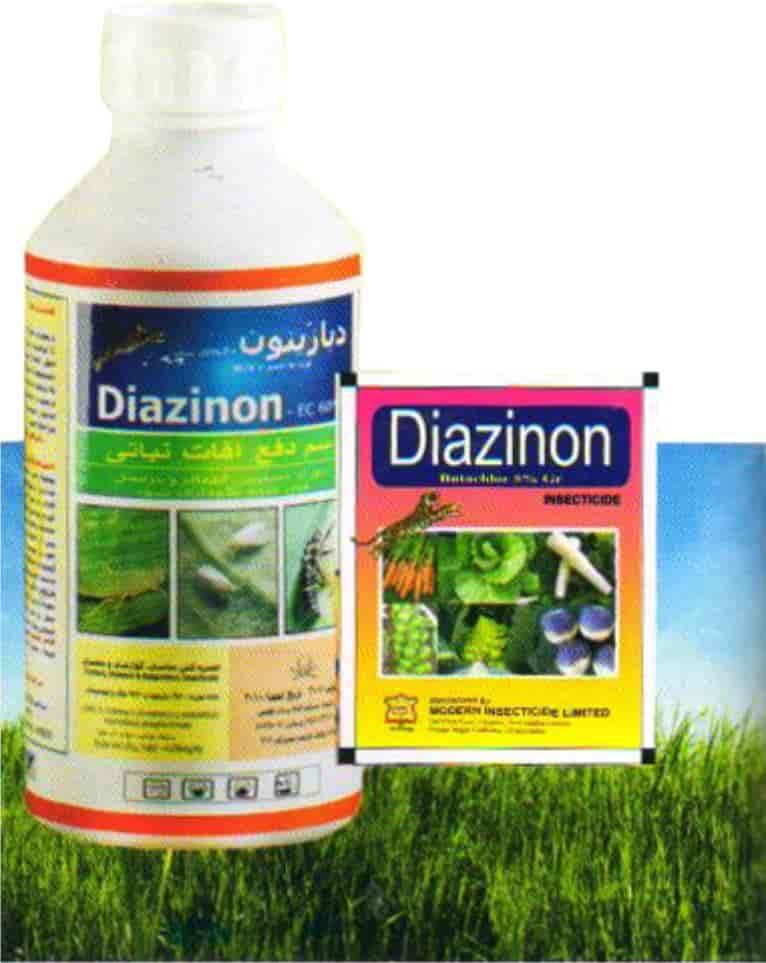 Peszticidek a lakásban – a növényvédő, gombaölő és rovarirtó szerek veszélyeiről - Tudatos Vásárló