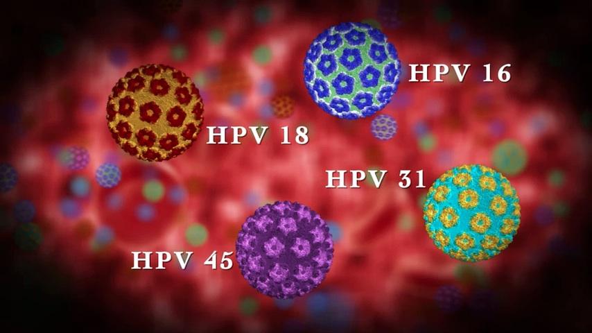 rákhoz kapcsolódó hpv típusok)