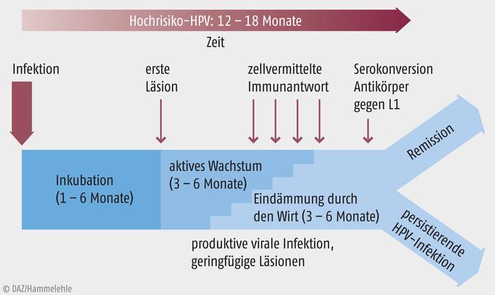 hpv impfung nach 18