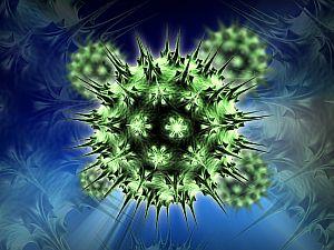 A fő nyaki rák és a HPV