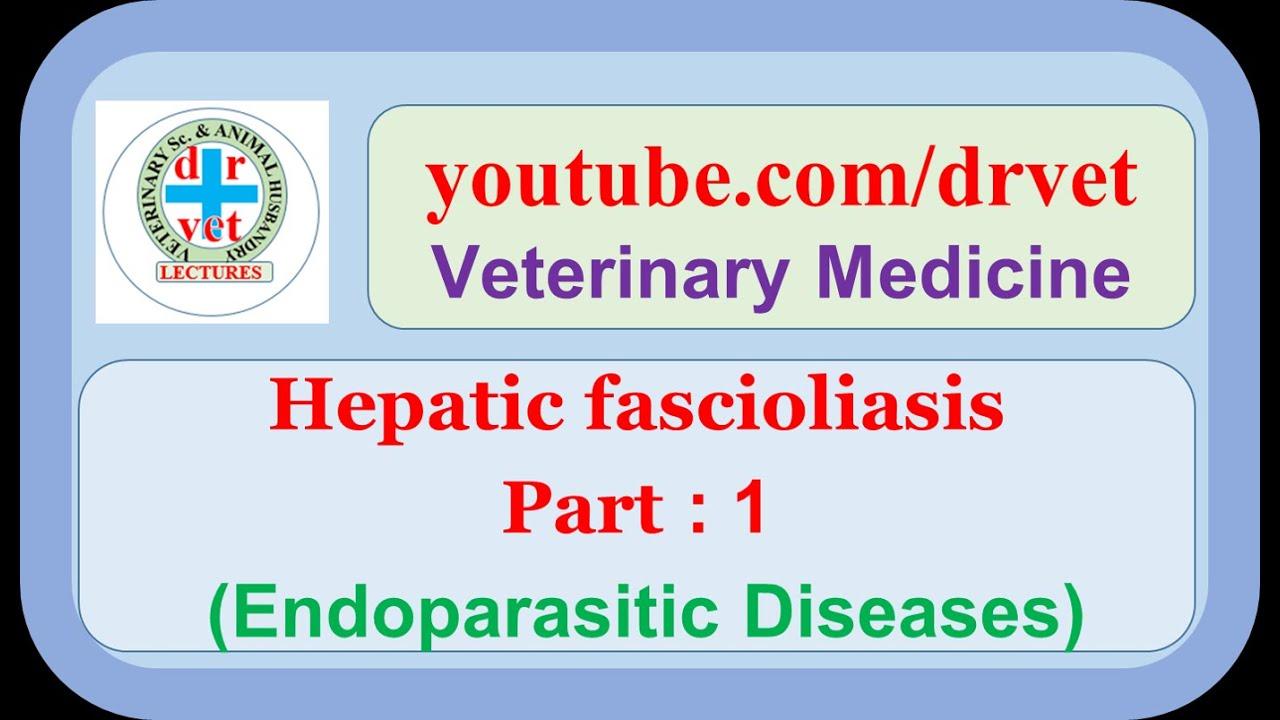 a fascioliasis patomorfológiája condyloma a férfiak fejlődésében
