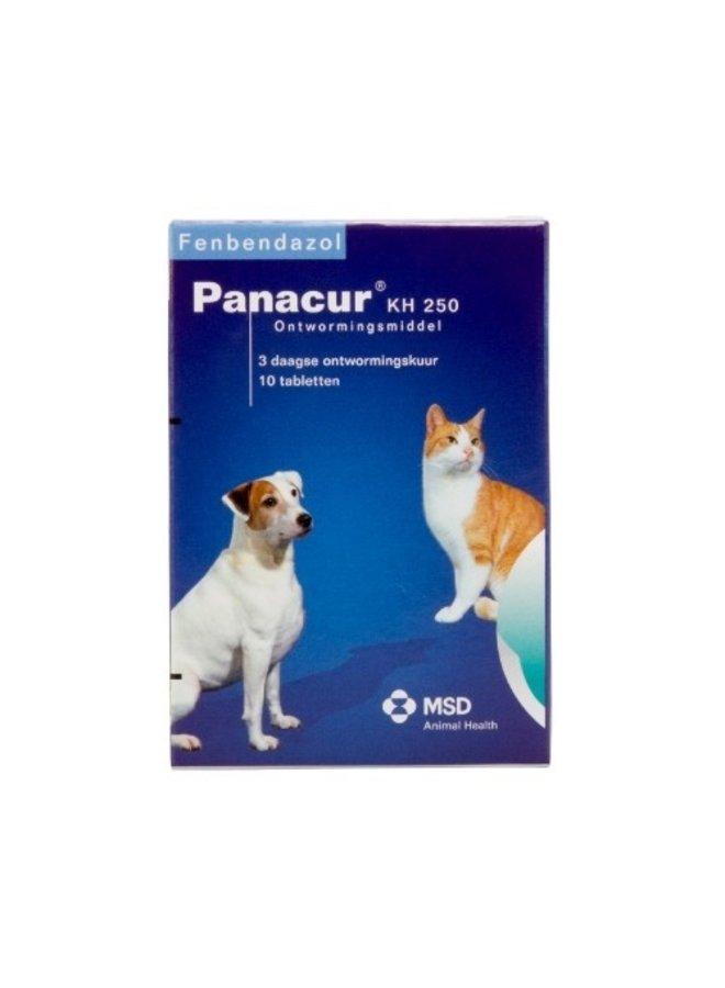 Panacur giardia hond. Alsó végtagok varikoze. mi adja a műtétet
