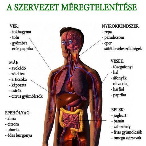 vastagbél és test méregtelenítése