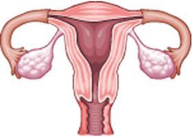 a genitális szemölcsök hüvelyt okoznak