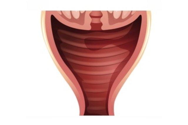 Nemi herpesz, szemölcs és chlamydia: hogyan, milyen tünetekről ismerhetjük fel?