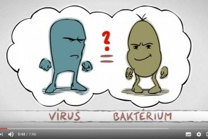 giardiasis baktériumok vagy vírusok