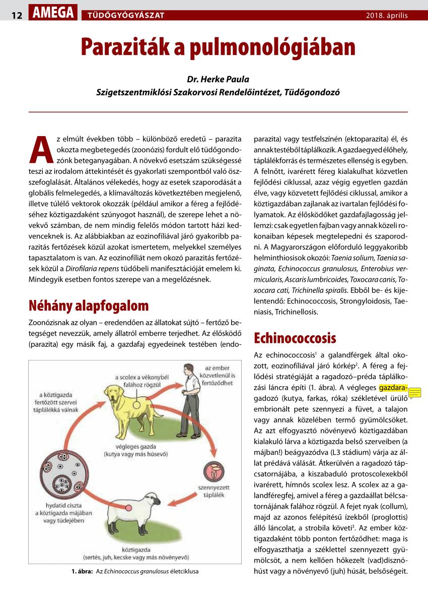 parazita fertőző ágens kontrasztos papillómák