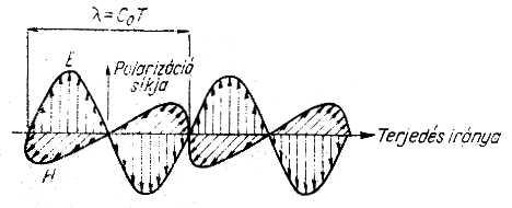 a papillómák megszüntetése a rádióhullámok árával platyhelminths 3 példa