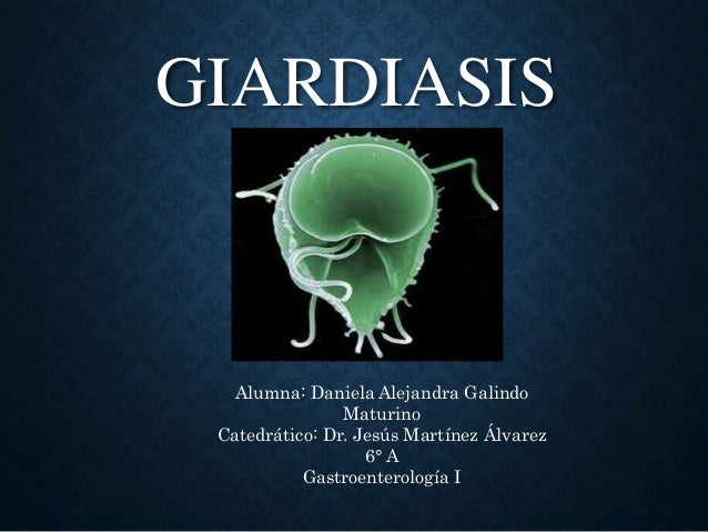 Mi a giardiasis?