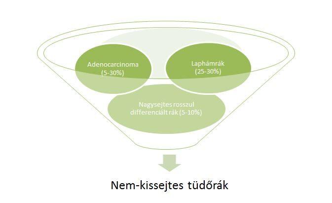 tüdőrák 4. stádium)