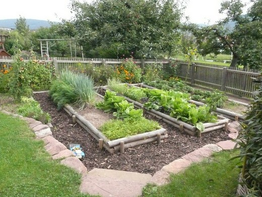 a kertben tartani