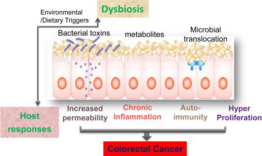multiplex intraductalis papillomatosis bőrrák neve