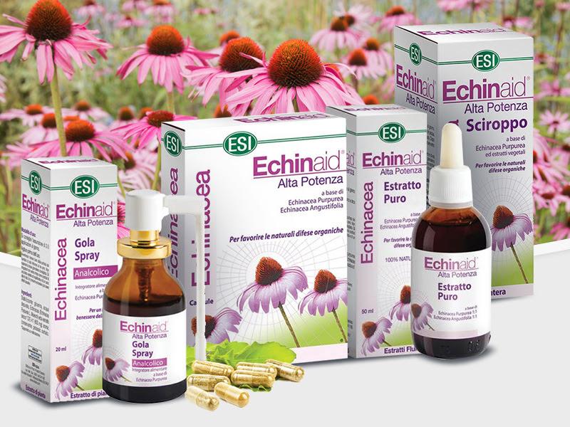 echinacea szemölcsök ellen