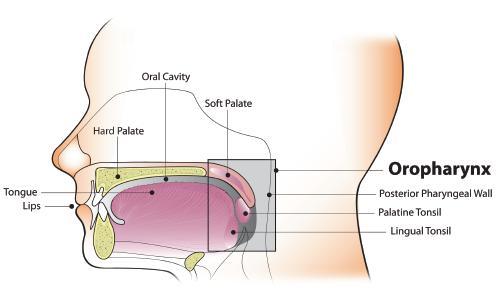 hpv oropharyngealis rák diagnózis