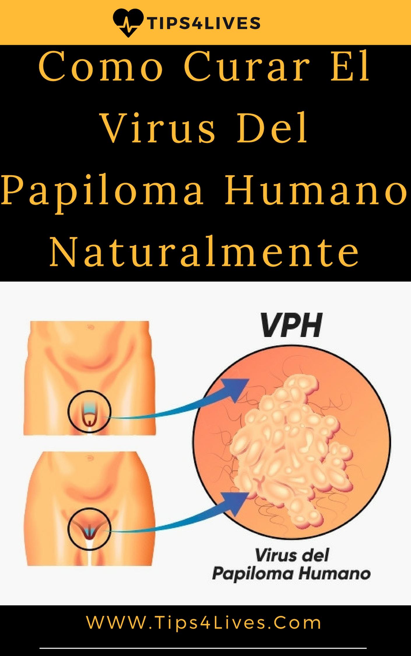 hpv vírus prijenos