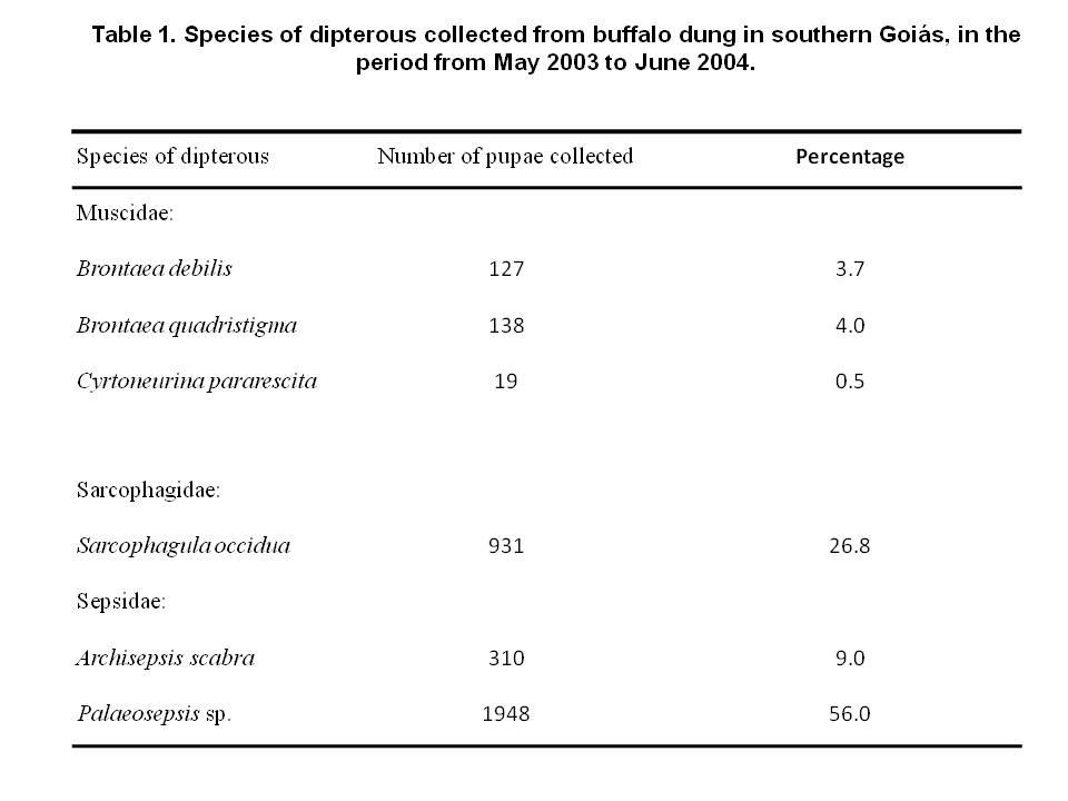 Röviden a diftéria butotriazisról